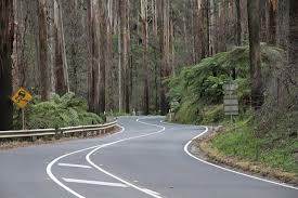 CANCELLED - Sunday Morning Drive to Black Spur and Warburton